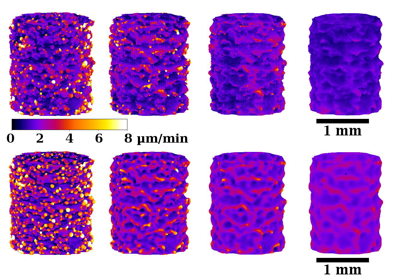 Local etching velocity on EBM TA6V struts : comparision of experiments and model.