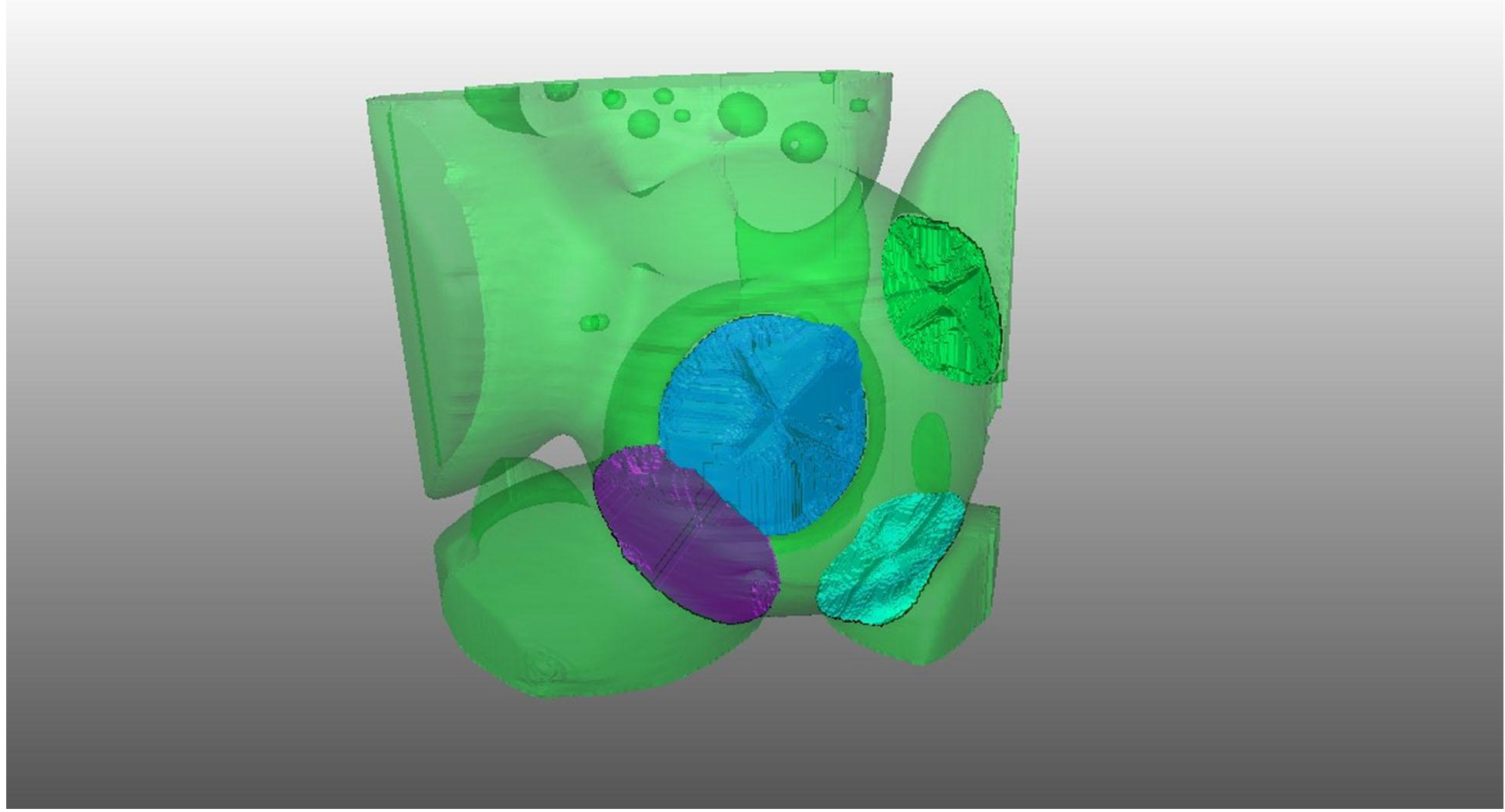 ESRF Spotlight Nanotomogrpahie de frittage ultra-rapide