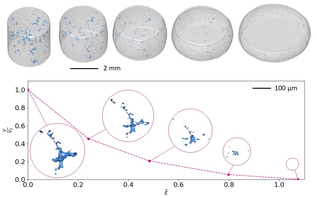 En haut: Vue 3D de l'évolution de la porosité (en bleu) au cours de la compression à chaud d'un échantillon cylindrique d'alliage d'aluminium. Bas: Evolution du volume d'un pore au cours de sa fermeture