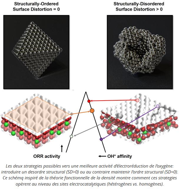 surface distortion descriptor